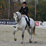 Concurso de adiestramiento oficial de caballos en Santiago