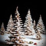 Esta navidad regala la perfección en chocolate junto a DAMIEN MERCIER