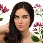 KLORANE: beneficios naturales de la quinina para la caída del cabello