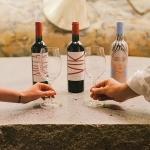 Descubre los encantos de Viña VIK en San Valentín