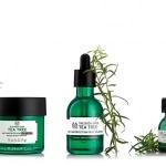 Tea tree oil, el aceite que cambia el estado de tu piel